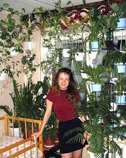 Комнатные растения для лентяя